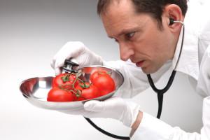 Arzt untersucht Tomaten mit Stethoskop auf Gefahr fr Gesundheit
